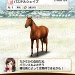 【ダビマス】パステルシェイプと見事な配合となる種牡馬を作成する
