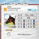 【ダビマス】ケイアイドウソジンと見事な配合となる牝馬を作成する