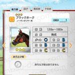 【ダビマス】ブラックホークと見事・完璧な配合となる牝馬を作成する
