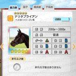 【ダビマス】ナリタブライアンと完璧な配合になる牝馬を作る!